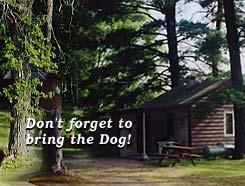 Dog Kennels Park Rapids Mn